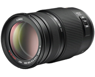 Panasonic LUMIX G VARIO 100-300mm/F4.0-5.6/MEGA O.I.S.