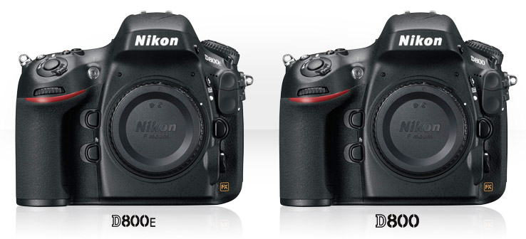 Nikon D800E and Nikon D800