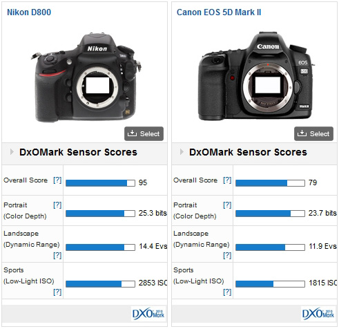Nikon D800 vs Canon EOS 5D Mark II