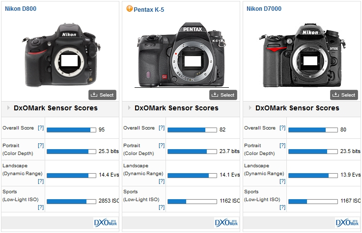Nikon D800 vs Pentax K5 vs Nikon D7000