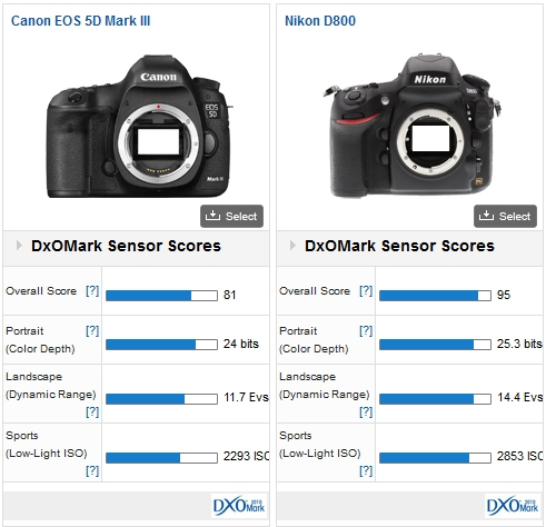 Canon 5D MK III vs Nikon D800
