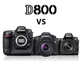 Nikon D800 vs its competitors — the Canon 5D Mark II, the Nikon D700, and the Nikon D4