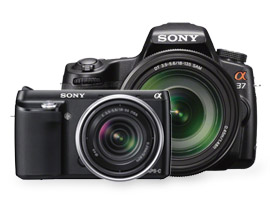 Sony annonces the NEX-F3 and the SLT A-37