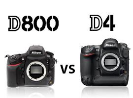 Nikon D800 vs Nikon D4