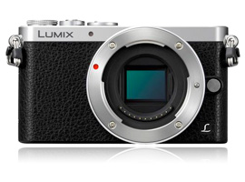 Best lenses for the 16-MPix Panasonic Lumix DMC-GM1: Best Zooms