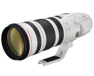Canon EF 200-400mm f/4L IS USM Extender 1.4x ON
