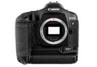 Canon EOS 1D Mark II with no lenses