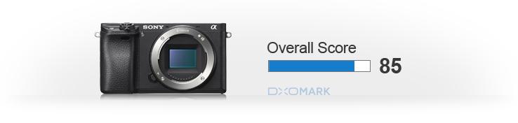 Sony a6300 sensor score