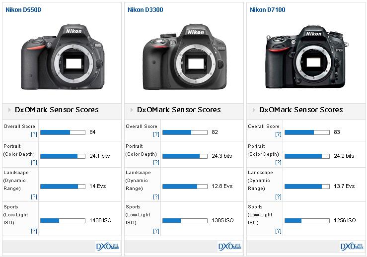 Nikon-D5500-versus-Nikon-D3300-versus-Nikon-D7100
