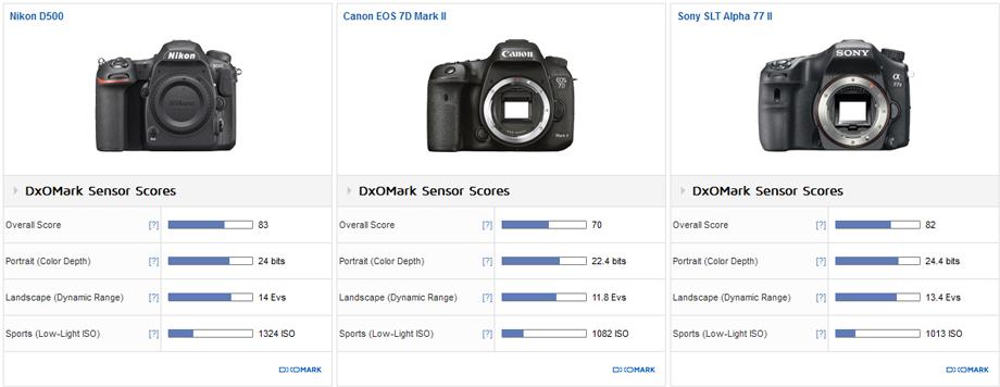 Nikon_D500__Canon_7D_MII__Sony_a77_II__920