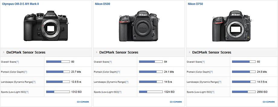 Olympus OM-D E-M1 Mark II vs Nikon D500 vs Nikon D750