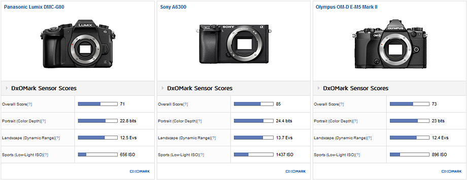 Panasonic Lumix DMC-G80 vs Sony A6300 vs OM-D E-M5 Mk II: Behind the best APS-C sensors