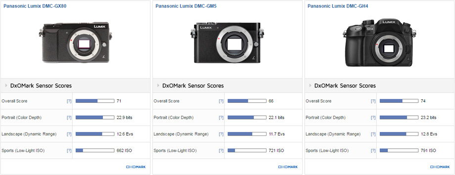 Panasonic GX80 vs. GM5 vs. GH4