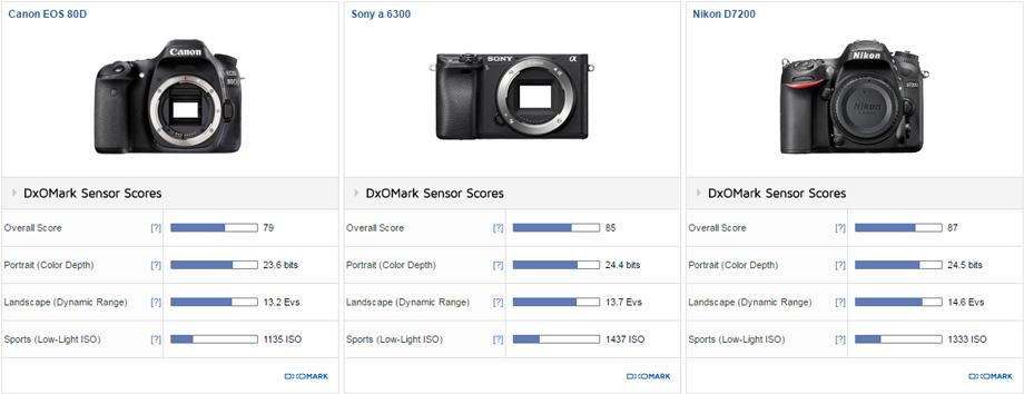 Canon EOS 80D vs. Sony a6300 vs. Nikon D7200