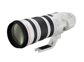 Canon EF 200-400mm f/4 IS USM Extender 1.4X review: does the performance justify the price?