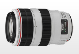 Canon EF 70-300mm f/4-5.6L IS USM test and ranking.