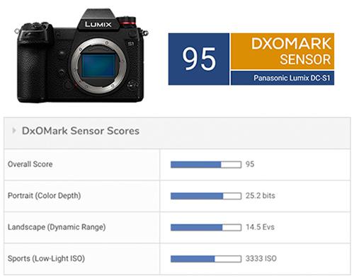 Panasonic Lumix DC-S1 sensor review - DxOMark